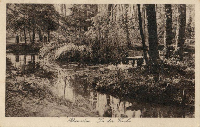 Złoty Potok (Fürster Bach) w Lesie Miejskim (Zeche)